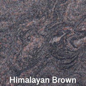 Himalayan-Brown